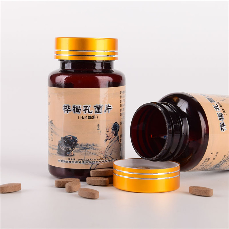 特医食品 白桦茸生产 白桦茸生产厂家
