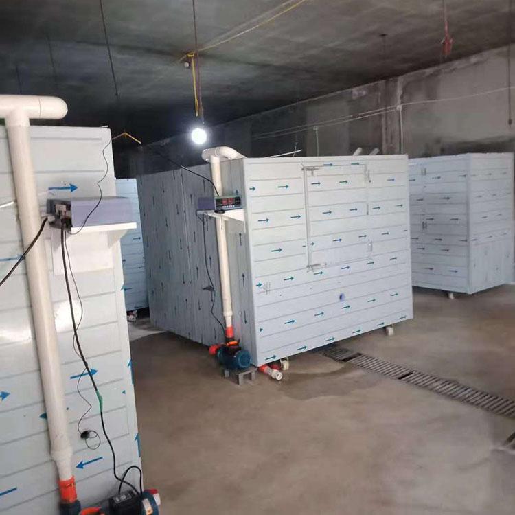 豆芽机价格全自动豆芽机价格 大型豆芽机价格 小型豆芽机价格
