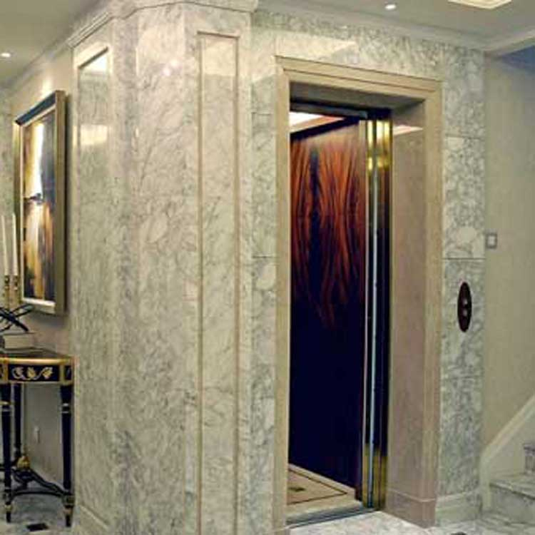 别墅电梯 奥吉斯电梯 电梯维保 电梯维修 货梯 客梯