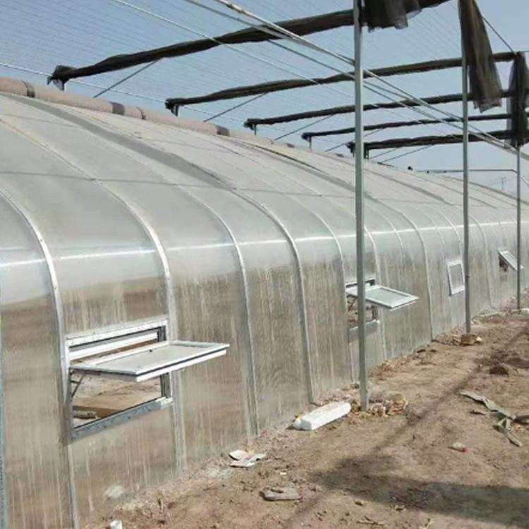 农业日光大棚生产厂家 大棚配件 蔬菜大棚 养殖大棚 日光大棚