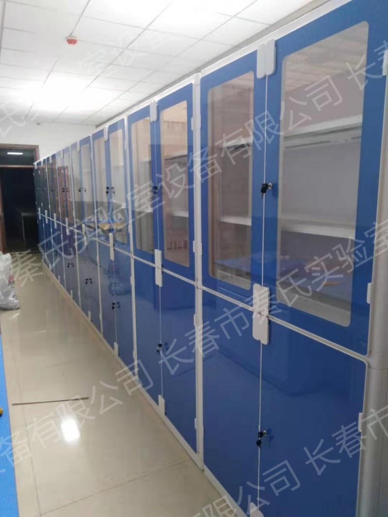 ABS仪器柜 ABS药品柜 化学品安全存储柜