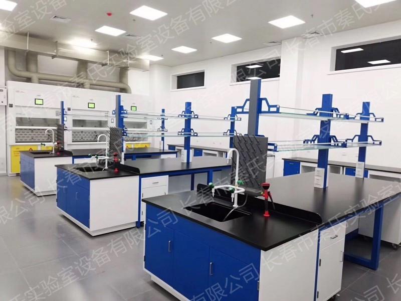 高端全钢实验台 实验应厂家 高端实验台定做 全钢实验台价钱