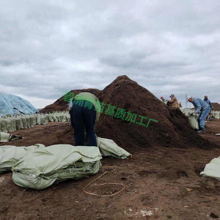 基地直销育苗基质 草炭土批发 泥炭土大量出售 草炭土价格优惠
